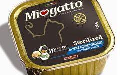 MIOGATTO STERIL PESCE AZZURRO/SALMONE GRAIN FREE 100 G