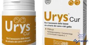 URYS CUR 30 CAPSULE BIRILLO