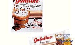 GALATINE CIOCCOLATO 50 G