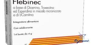 FLEBINEC 14 BUSTINE