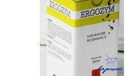 ERGOZYM 250 ML