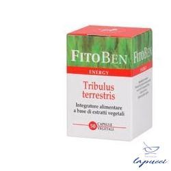 TRIBULUS TERRESTRIS 50 CAPSULE