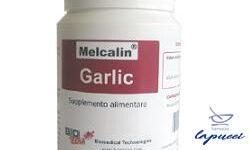 MELCALIN GARLIC 84 CAPSULE