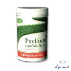 PSYLLIUM FIBRA ETP BARATTOLO 170 G