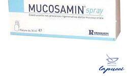 SPRAY MUCOSAMIN 30 ML CON EROGATORE A CANNULA