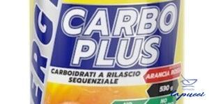 PROACTION CARBO PLUS ALL'ARANCIA ROSSA 530 G