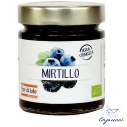 COMPOSTA MIRTILLO 250 G