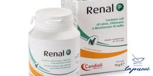 RENAL P MANGIME COMPLEMENTARE PER CANI E GATTI BARATTOLO 70G