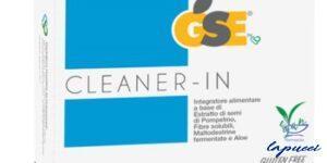 GSE CLEANER-IN 14 BUSTINE MONODOSE DA 5,45 G