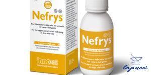 NEFRYS VEG 100 100 ML CON SIRINGA DOSATRICE ALIMENTO COMPLEMENT