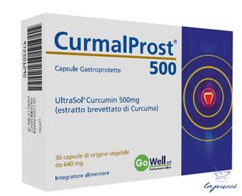 CURMALPROST 500 30 CAPSULE GASTROPROTETTE