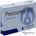 PSICOPHYT REMEDY 10B 4 TUBI 1,2 G