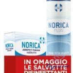 NORICA PLUS 300 ML  SALVIETTINE OMAGGIO