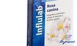 ROSA CANINA 20 COMPRESSE 20 G LINEA INFLULAB